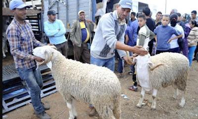 رسميا..وزارة الأوقاف تعلن عن يوم عيد الأضحى في المغرب