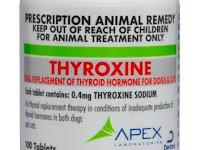 Sodium Thyroxine - Kegunaan, Dosis, Efek Samping