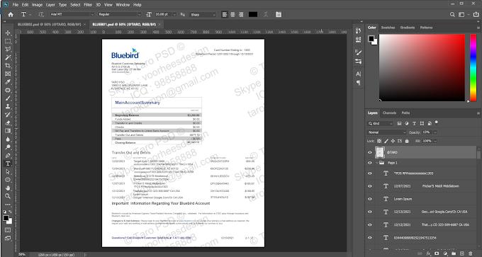 BLUEBIRD STATEMENT EDITABLE PSD TEMPALTE (2 PAGES)