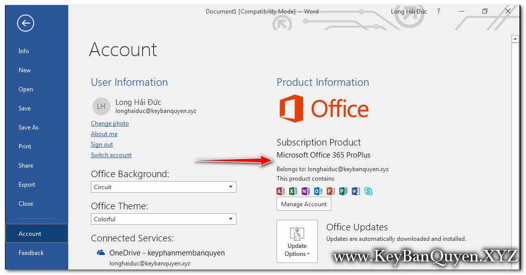 cài đặt Office 365 Pro Plus bản quyền