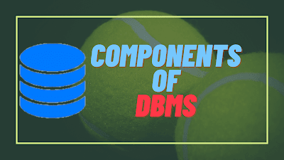 Components of DBMS - Dbms components in Hindi
