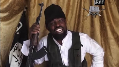 US Placed N2.5bn On Boko Haram Leader, Shekau