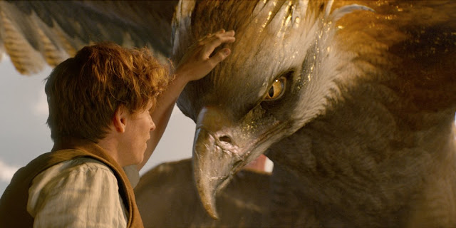 Eddie Redmayne em ANIMAIS FANTÁSTICOS E ONDE HABITAM (Fantastic Beasts and Where to Find Them)