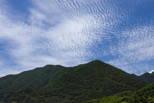 Jenis awan cirrocumulus