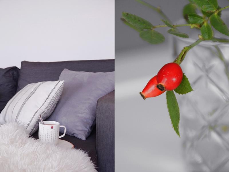 Wohnzimmer herbstlich und gemütlich dekorieren mit Hagebutten und Wohntextilien
