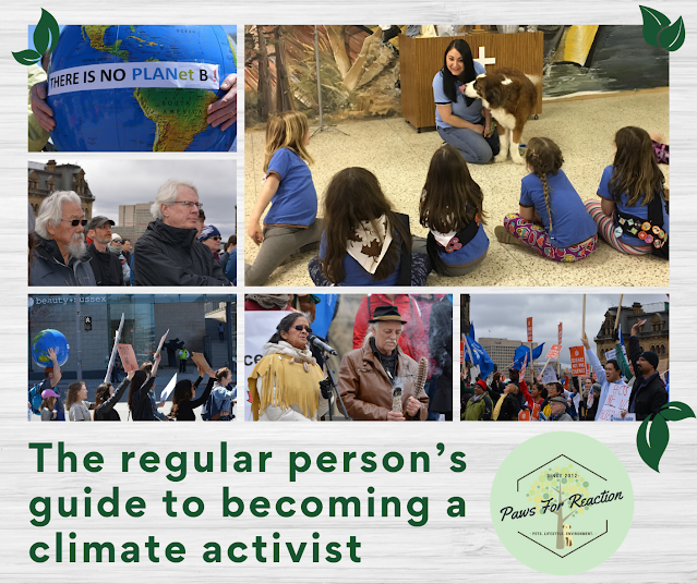 The regular person's guide to becoming a climate activist