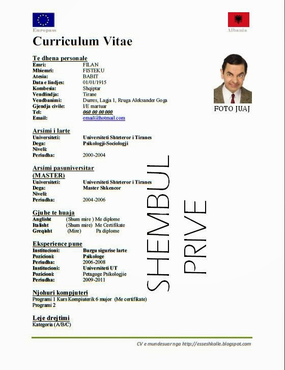curriculum vitae shqip shembuj