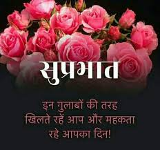 Good Morning Flowers with Hindi Quotes