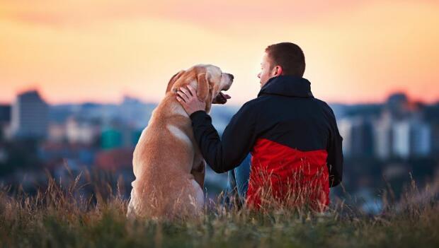 Η επιστήμη το επιβεβαιώνει: Σκύλος και άνθρωπος δένονται με αληθινή αγάπη