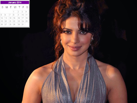 Priyanka Chopra Calendar 2014: Priyanka Chopra New Year 2014 Calendar - 2014 New Year Desk Helper