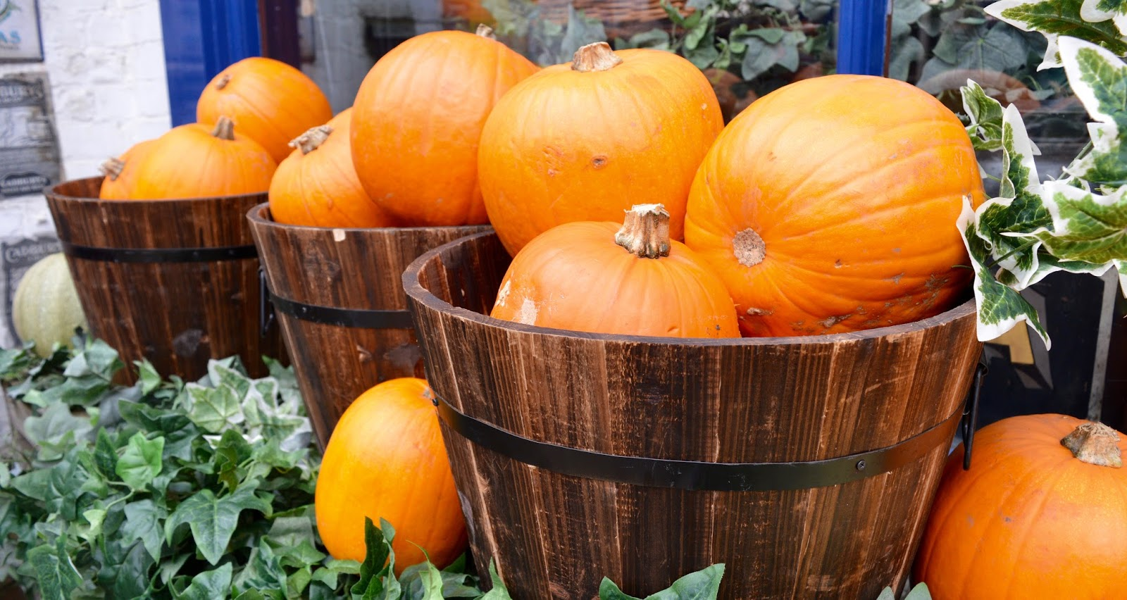 Half Term Hocus Pocus at Preston Park | The North East's very own Diagon Alley - pumpkins