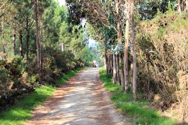 olveiroa-camino-de-santiago-finisterra-sendero-peregrinos
