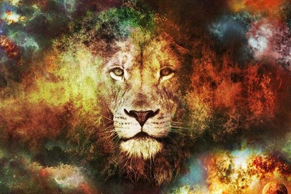 12 причин, почему Лев – самый лучший знак Зодиака
