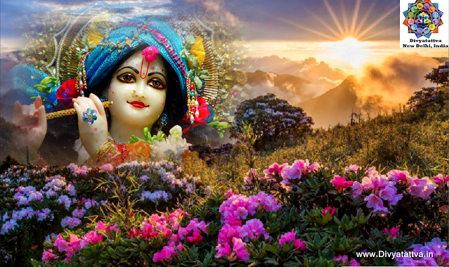 Supreme Being pics, sri krishna images, Hindu Deity Lord Krishna HD Wallpaper For Janmashtami