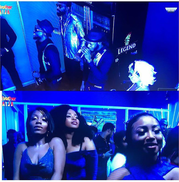 #BBNaija 2019: Tacha & Kim Oprah missing as all evicted housemates party with the top 5 finalists (video)