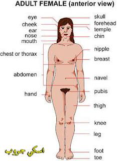 معجزة فى جسم النساء Miracle in the body of women