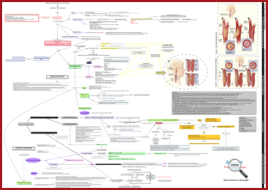 ischemic_stroke_concept_map_zoom_out_pharmacotherapy
