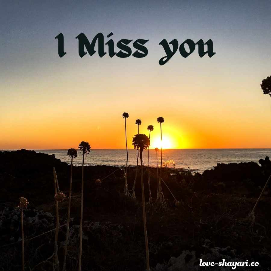 cute miss you images