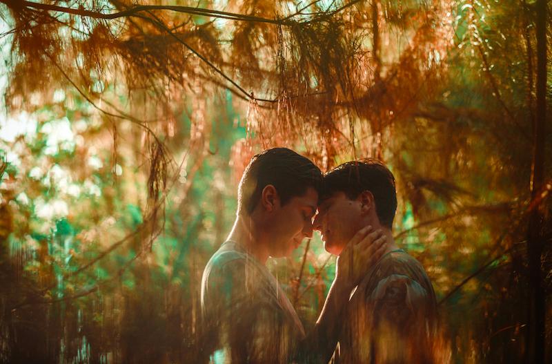 Este ensaio encantador prova que o amor é uma coisa sublime