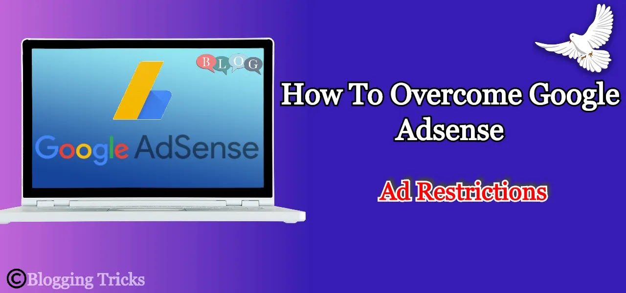 How To Overcome Google Adsense Ad Restrictions - [ Pro Guide ]