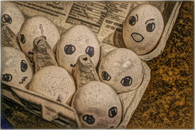Funny eggs free pictures