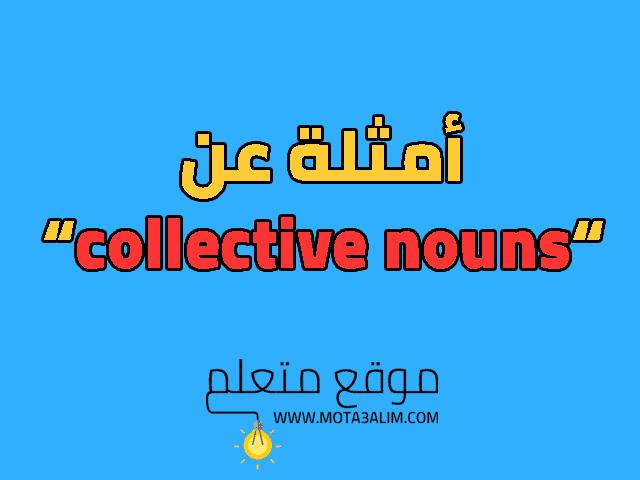 امثله على collective nouns: