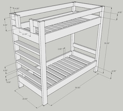Anthropometric Measures Bunk Bed Dimensions