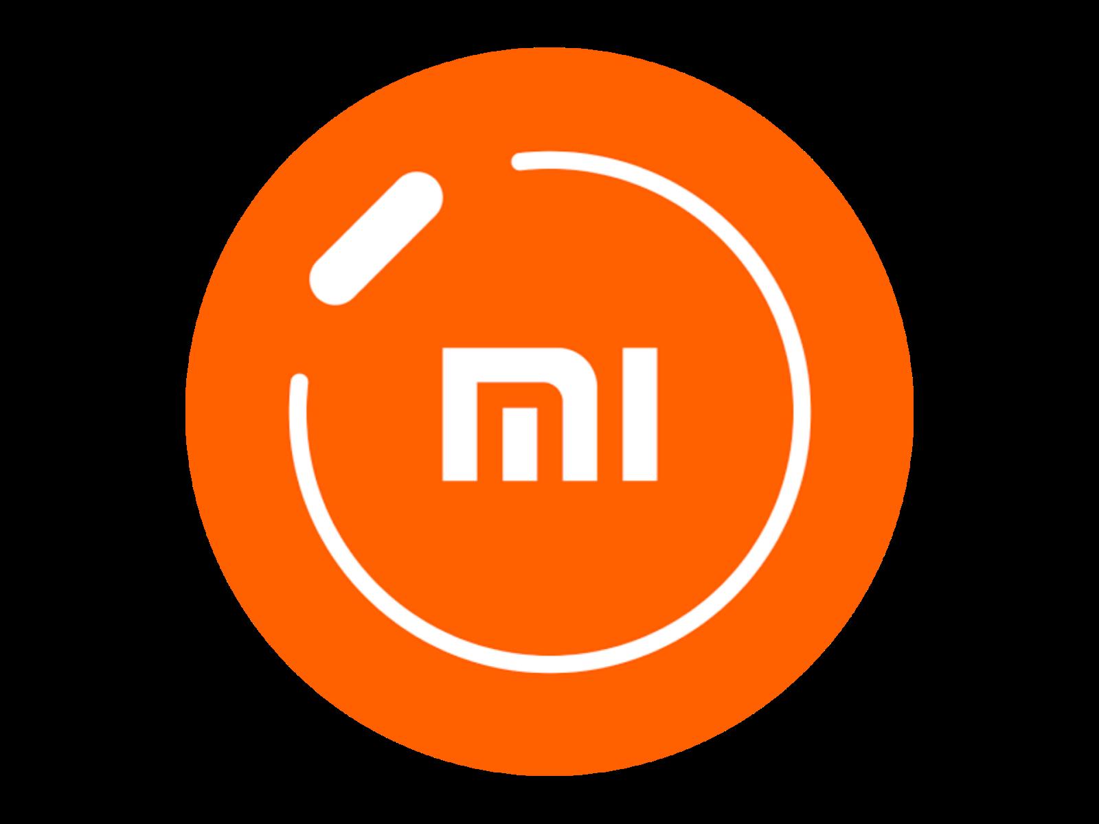 Logo Mi Fit Format PNG