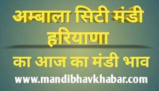 Aaj ka mandi bhav | Ambala city sabji mandi bhav | Ambala city mandi bhav today | हरियाणा मंडी भाव | Haryana mandi bhav today | mandibhavkhabar.com | mandibhavtoday.com | mandibhav.com | kisansamadhan.com | today market rates