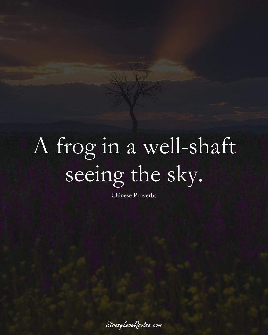 A frog in a well-shaft seeing the sky. (Chinese Sayings);  #AsianSayings