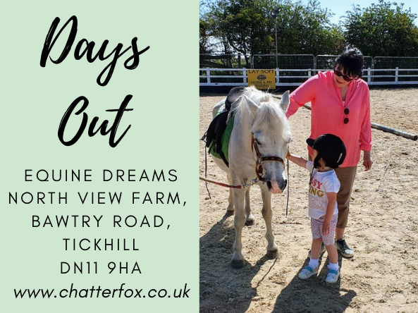 Image title reads 'days out visiting equine dreams, north view farm, bawtry road, tickhill, DN11 9H ,www.chatterfox.co.uk image to the right shows a woman and her daughter stroking a horse.