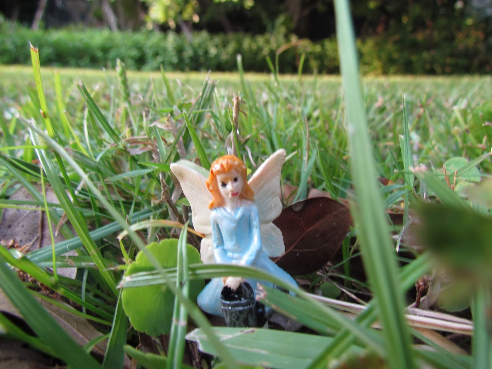 A Fairy Earthing in the Elements of Nature in the Forest Floor on Green Grass in Summer