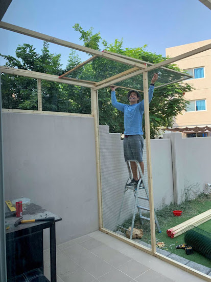 Catio in the Middle East