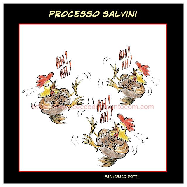 Processo Salvini