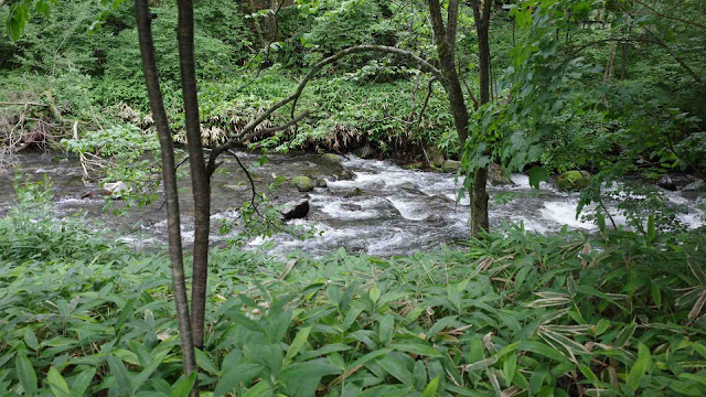 ハルニレテラスの直ぐ裏にある谷川のせせらぎ