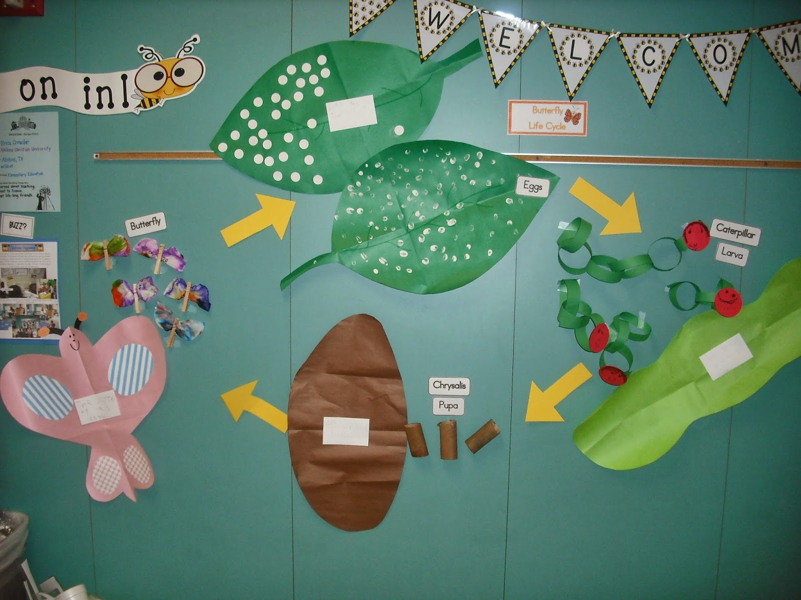 Sprinkles To Kindergarten A Little Butterfly And Froggy Fun