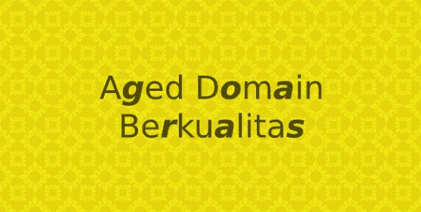 Tips menganalisis aged domain yang akan dibeli