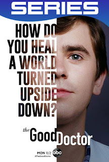 The Good Doctor Temporada 4 Completa HD 1080p Latino