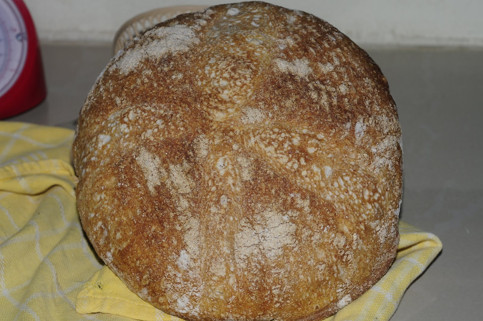my discovery of Bread: Tartine  my discovery of...