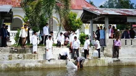 Bupati Tebar Bibit Ikan di Tabek Masjid Raya Sungai Sariak Lubuak Bareh
