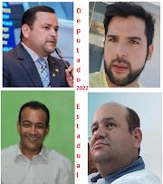Quem vai ser eleito para deputado estadual em nossa região ?