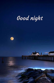 Good Night Sms Shayari in Hindi