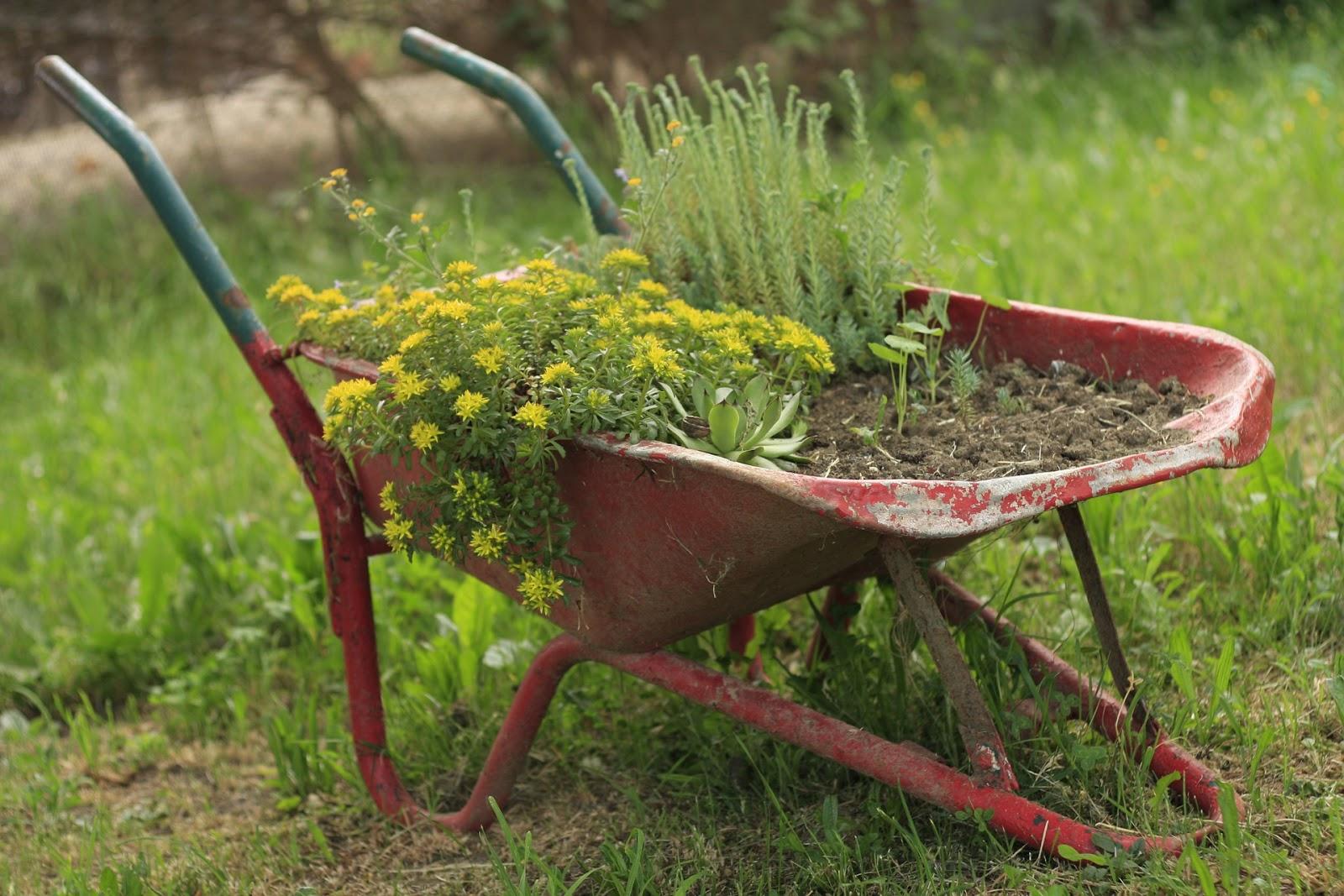 Wiosenne porządki w domu i ogrodzie.