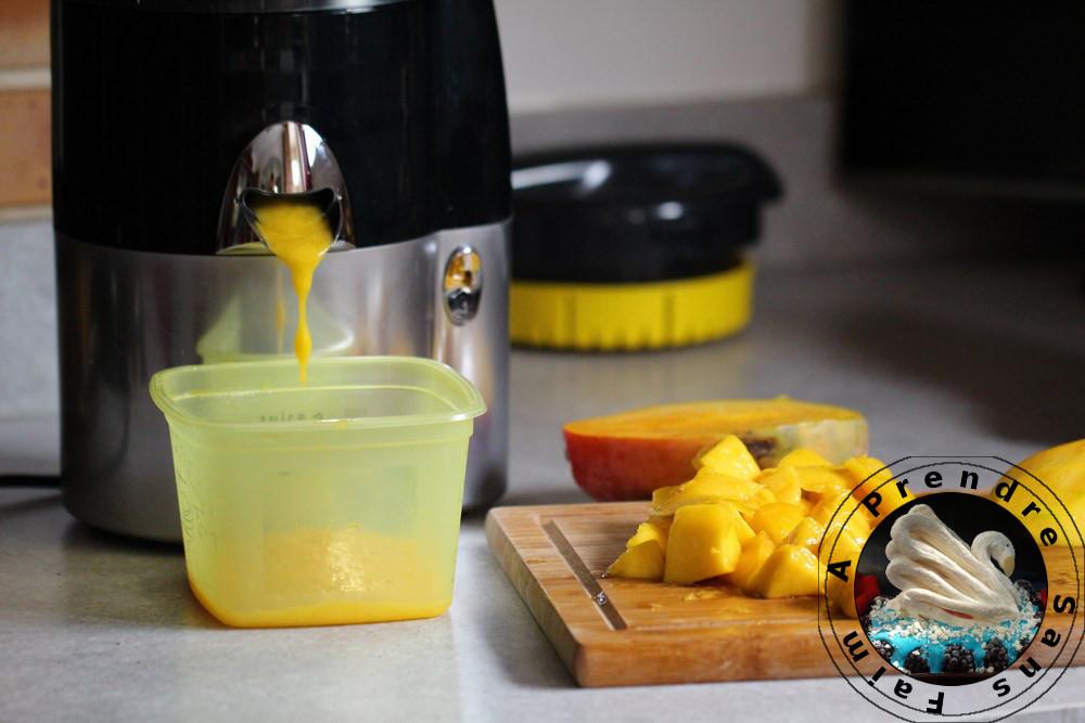 Gâteau sans cuisson mangue orange avec Magimix