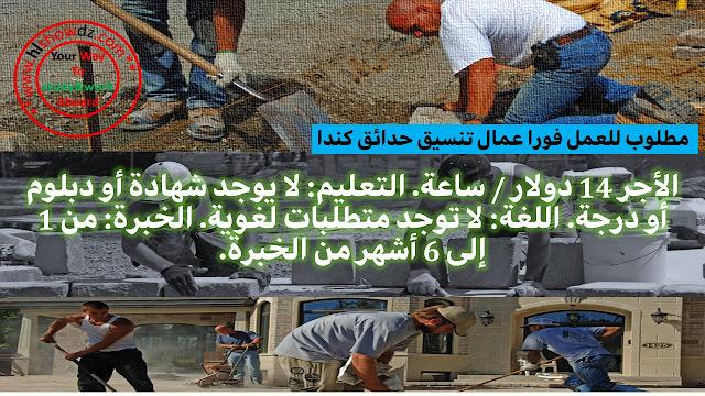 مطلوب عمال