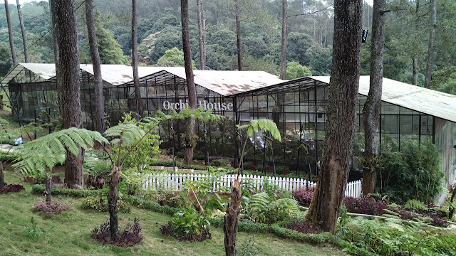 orchid forest bandung