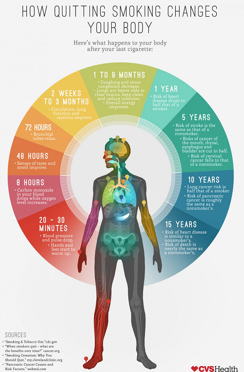 Çfarë i Ndodh Trupit kur Lëmë Duhanin