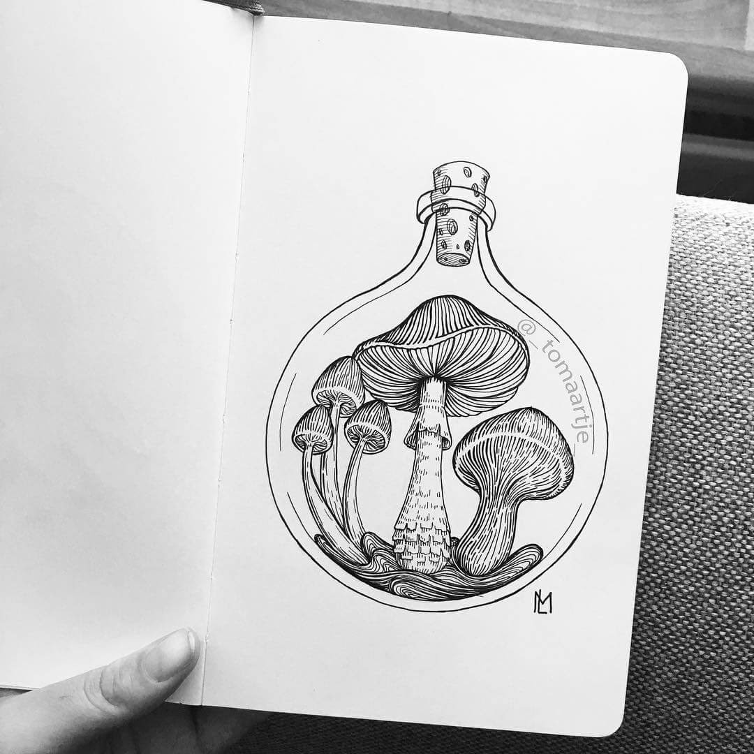 09-Mushrooms-Maartje-Ink-Drawings-Mostly-Enclosed-www-designstack-co