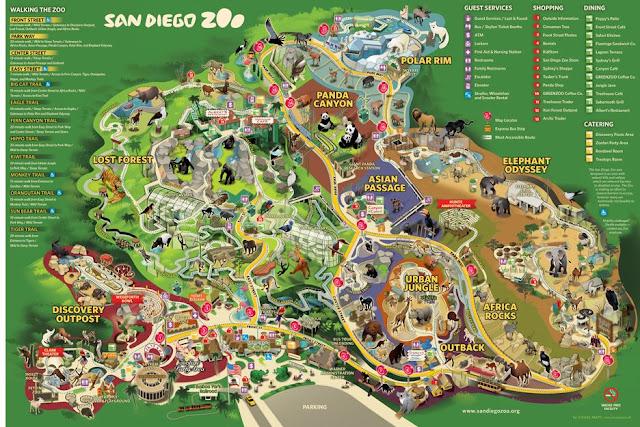 Atrações do San Diego Zoo em San Diego