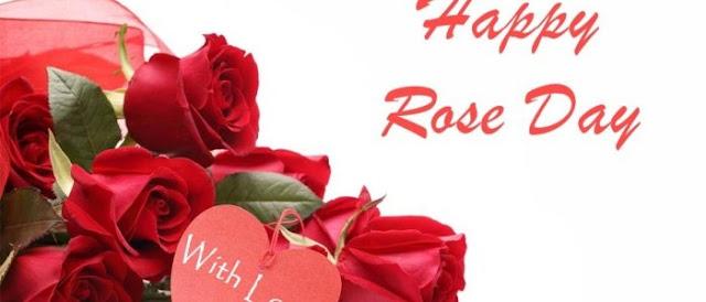 Rose Day 1